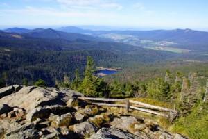 Der Bayerische Wald ist ein beliebtes Ausflugsziel von Bad Birnbach aus.
