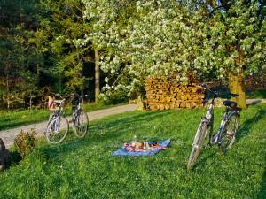 Picknick während einer Radtour durch Bad Birnbach.